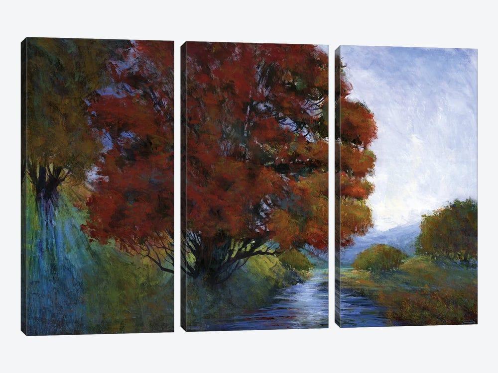 Summer Brook by Michael Tienhaara 3-piece Canvas Art Print
