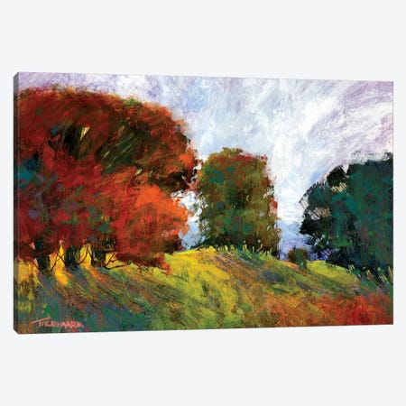 Aura Of Fall III Canvas Print #MTH6} by Michael Tienhaara Art Print