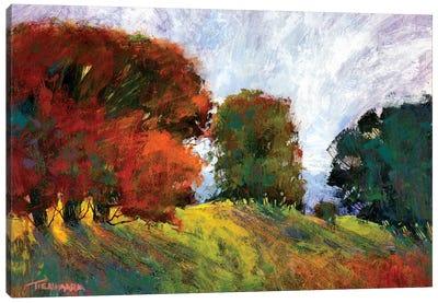 Aura Of Fall III Canvas Art Print