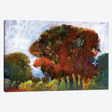 Aura Of Fall IV Canvas Print #MTH7} by Michael Tienhaara Art Print