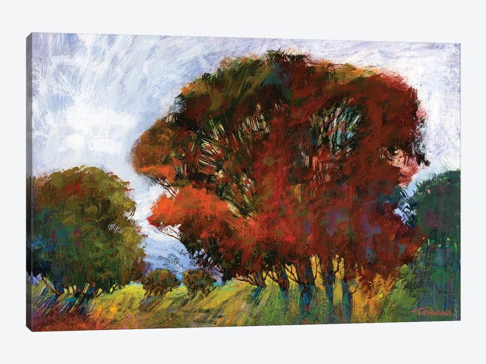 Aura Of Fall IV by Michael Tienhaara 1-piece Canvas Print