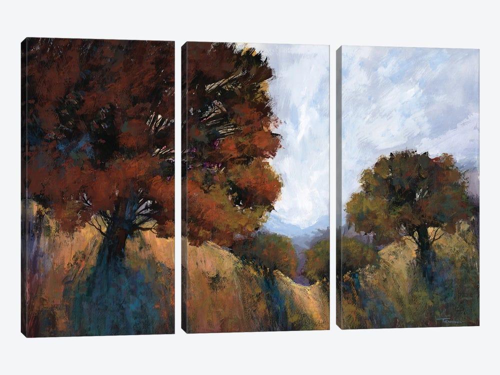 Magical Memories VI by Michael Tienhaara 3-piece Canvas Art