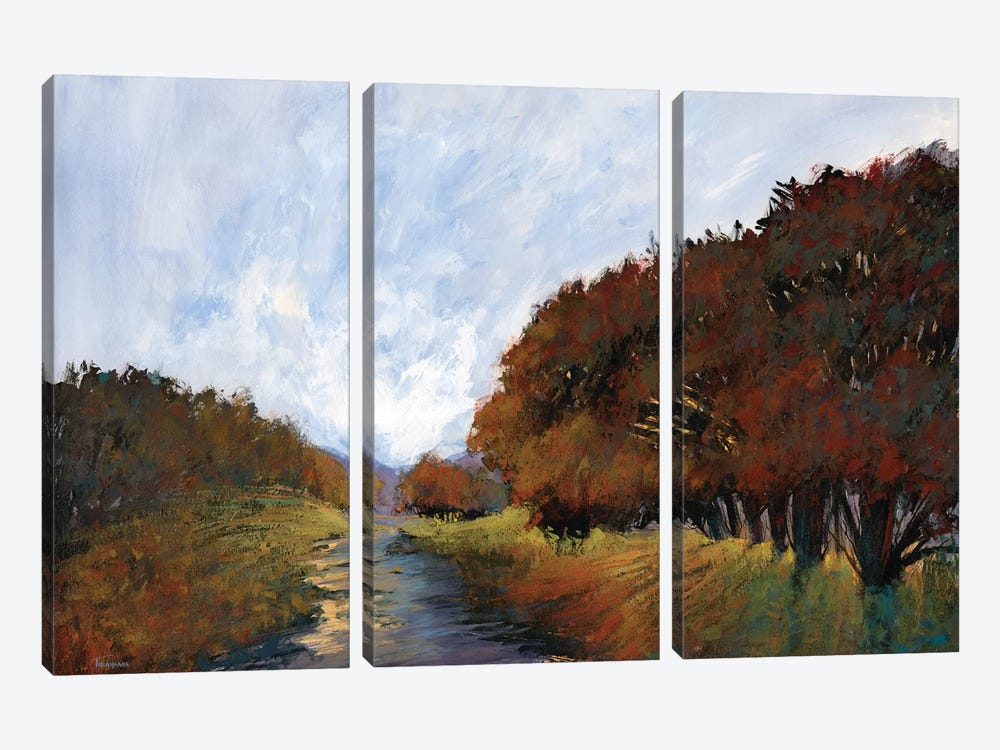 Moments In Time V by Michael Tienhaara 3-piece Canvas Print