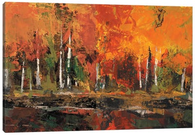 Shore Section Canvas Art Print