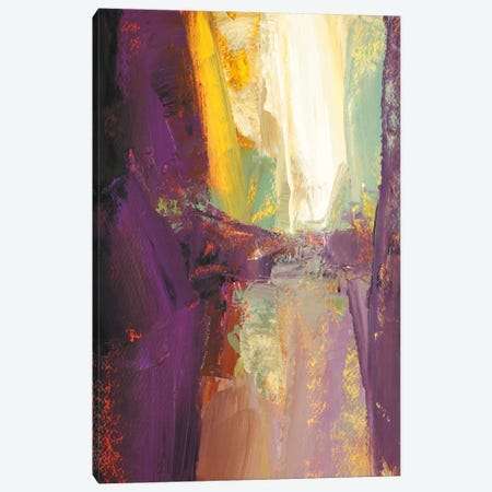 Violet Falls Canvas Print #MTN13} by Martin Shire Art Print