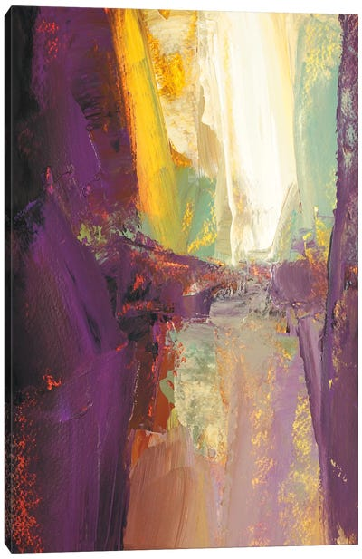 Violet Falls Canvas Art Print