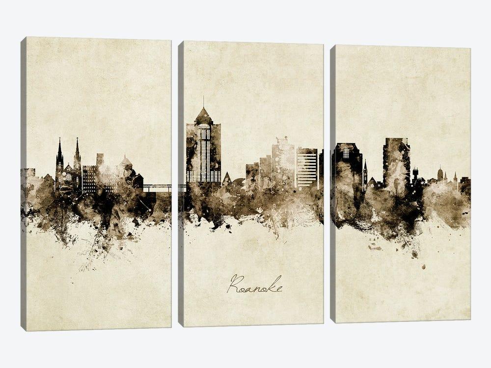 Roanoke Virginia Skyline Vintage by Michael Tompsett 3-piece Art Print