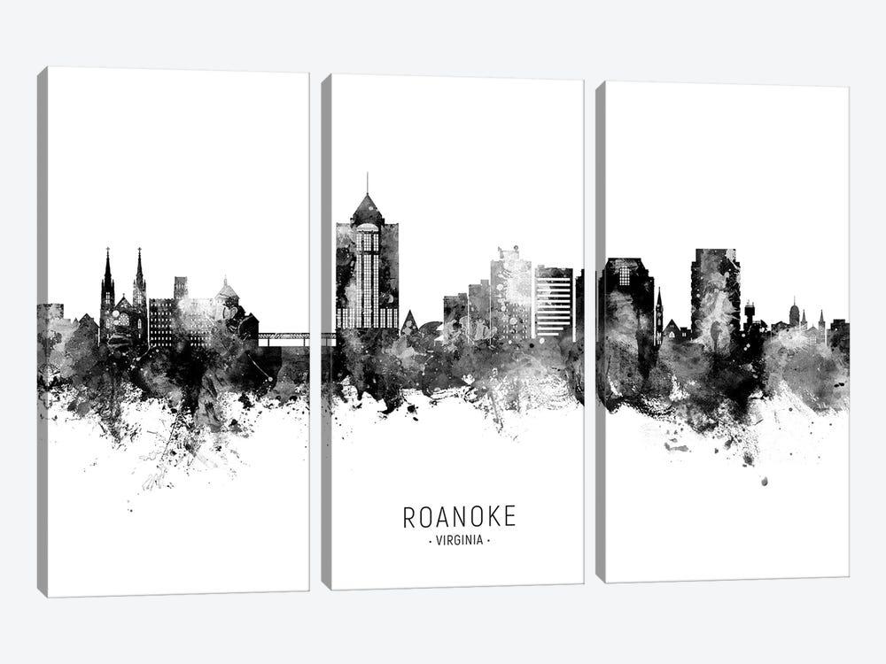 Roanoke Virginia Skyline Name Bw by Michael Tompsett 3-piece Canvas Wall Art