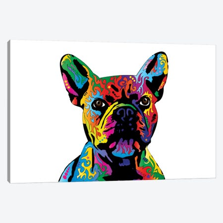 Rainbow French Bulldog On White Canvas Print #MTO499} by Michael Tompsett Canvas Artwork