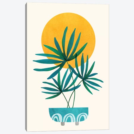 Little Palm Canvas Print #MTP107} by Modern Tropical Canvas Artwork