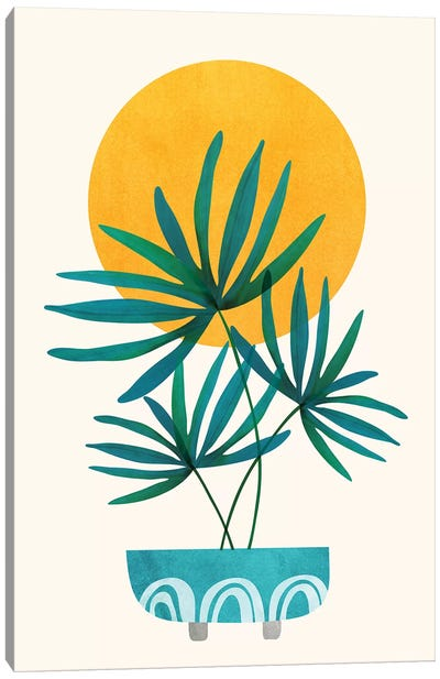 Little Palm Canvas Art Print