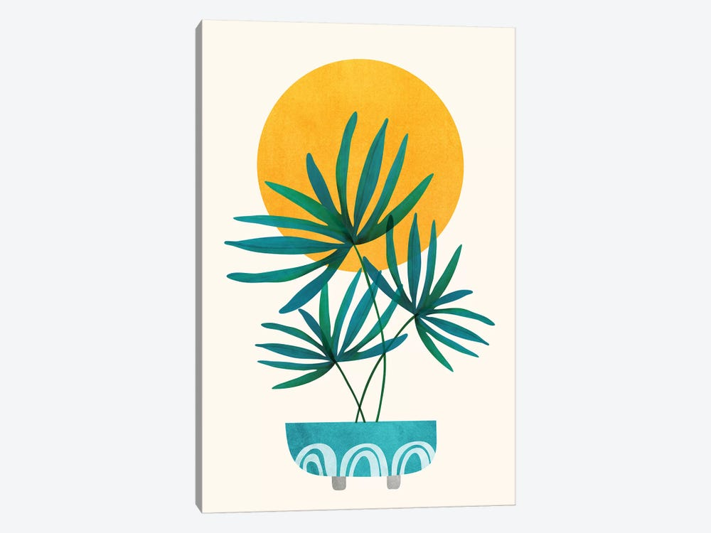 Little Palm by Modern Tropical 1-piece Canvas Artwork