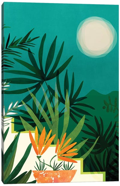 Tropical Moonlight Canvas Art Print