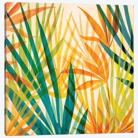 Golden Tropics Canvas Print #MTP123} by Modern Tropical Canvas Art Print