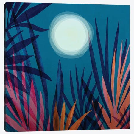 Moonlit Garden Canvas Print #MTP127} by Modern Tropical Canvas Wall Art