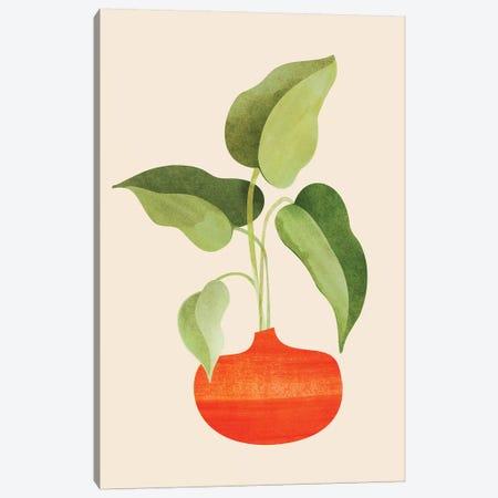 Beginnings Canvas Print #MTP128} by Modern Tropical Canvas Art Print