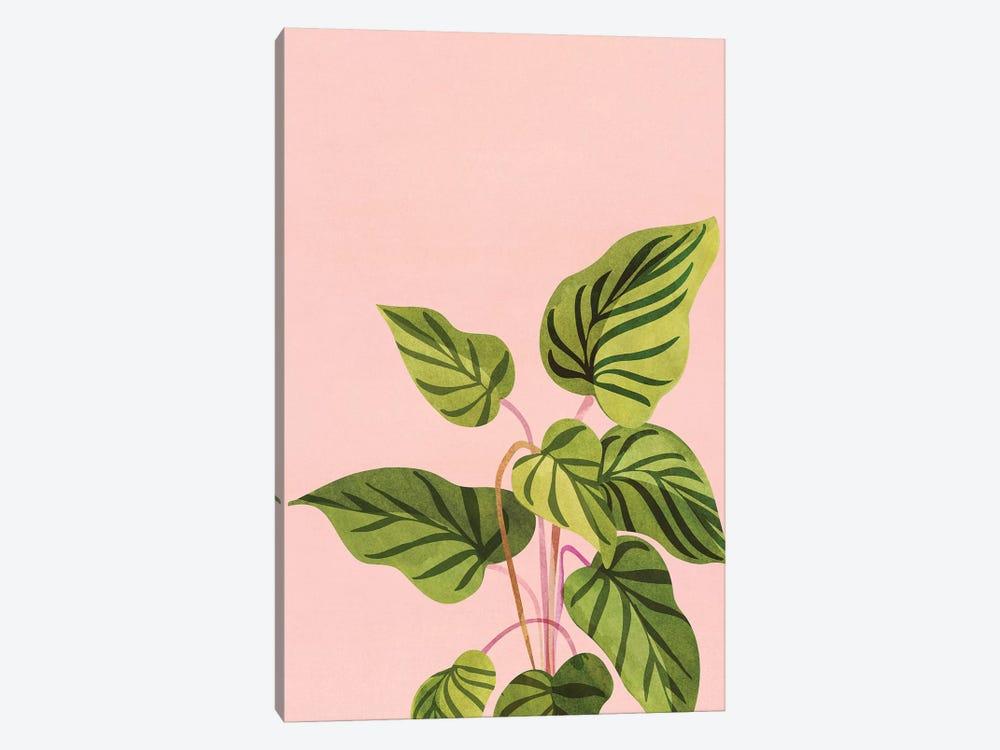 Tropical Rising by Modern Tropical 1-piece Canvas Artwork