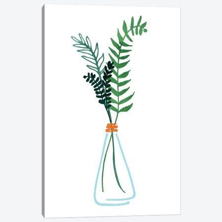 Herb Sprigs Canvas Print #MTP136} by Modern Tropical Art Print