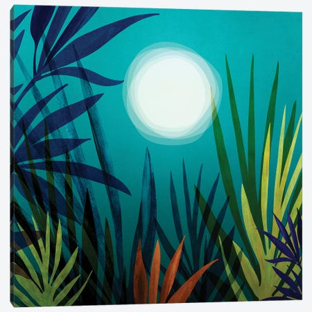 Midnight In The Jungle Canvas Print #MTP139} by Modern Tropical Canvas Art