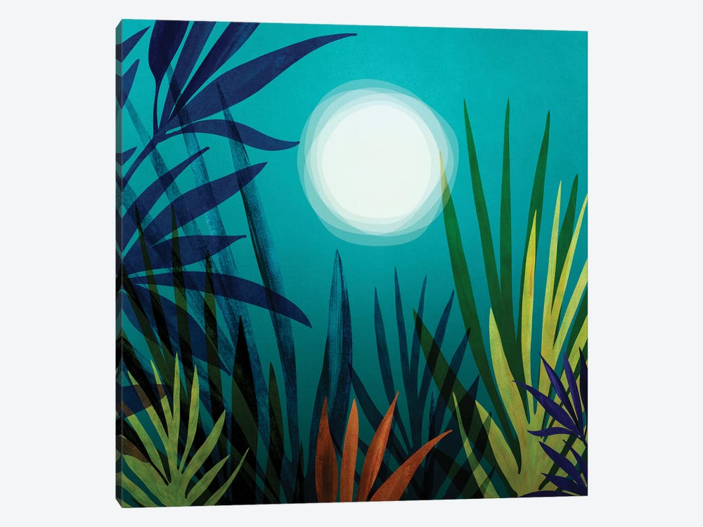 Midnight In The Jungle by Modern Tropical 1-piece Canvas Art Print