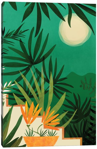 Exotic Garden Nightscape Canvas Art Print