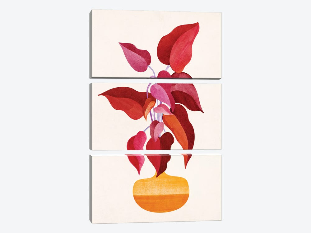 All Grown Up by Modern Tropical 3-piece Canvas Art