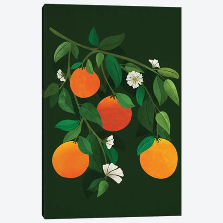 Oranges And Blossoms Canvas Print #MTP152} by Modern Tropical Canvas Artwork
