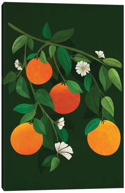 Oranges And Blossoms Canvas Art Print