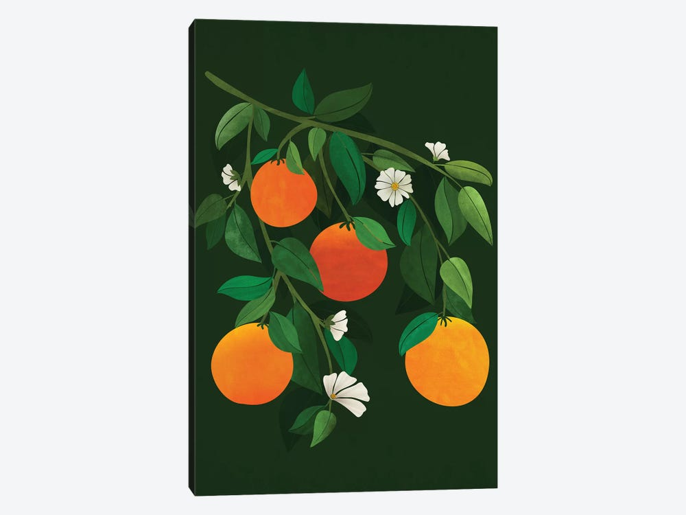 Oranges And Blossoms by Modern Tropical 1-piece Canvas Wall Art