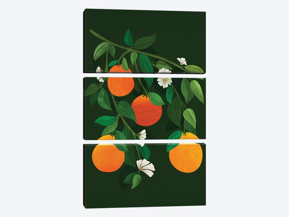 Oranges And Blossoms by Modern Tropical 3-piece Canvas Art