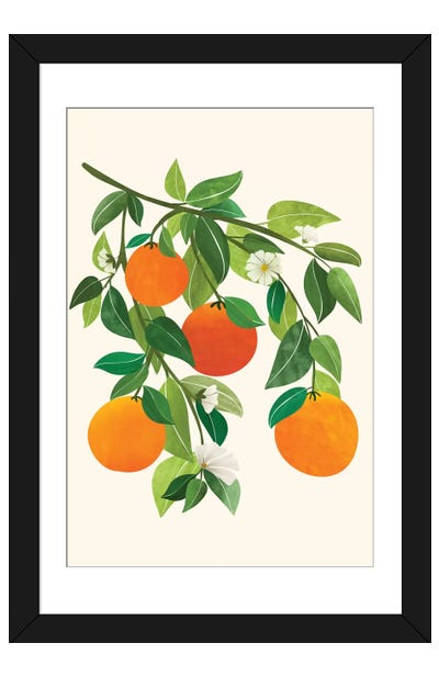 Oranges And Blossoms Ii Framed Art Print