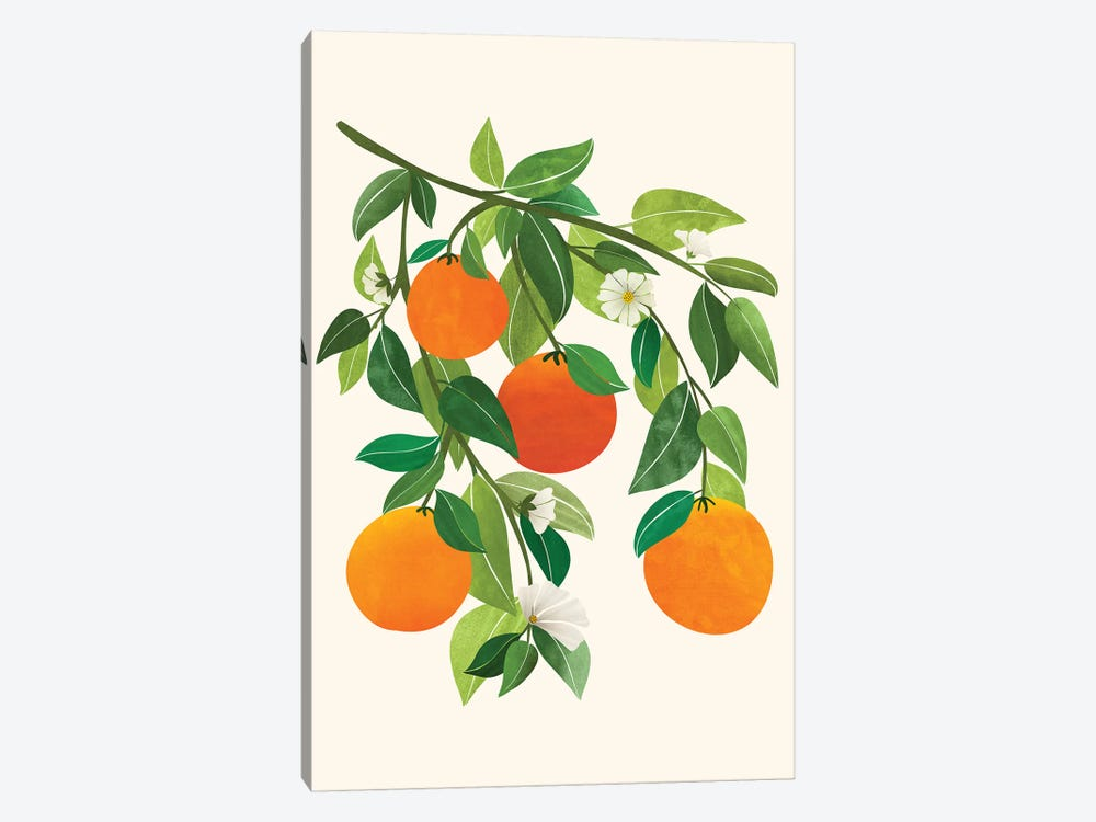 Oranges And Blossoms Ii by Modern Tropical 1-piece Canvas Print