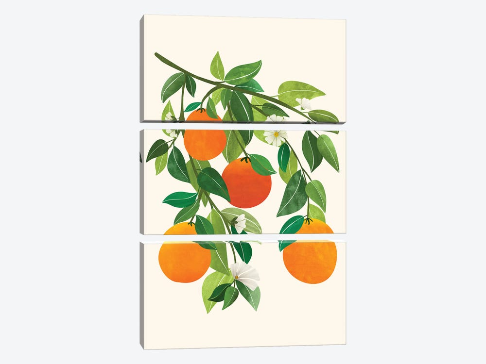Oranges And Blossoms Ii by Modern Tropical 3-piece Art Print