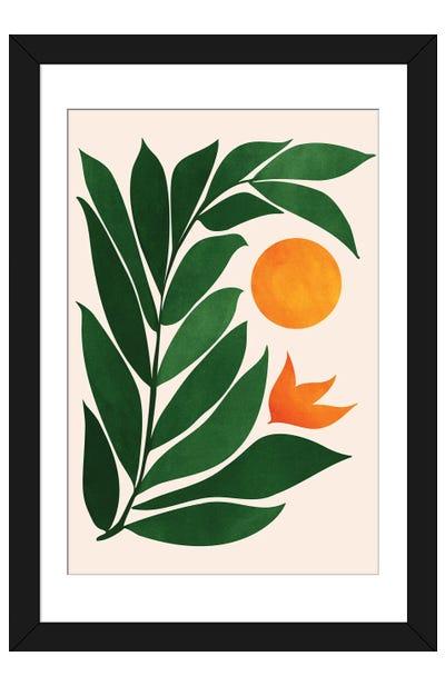 Garden Sunset III Framed Art Print