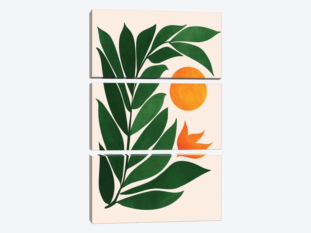 Garden Sunset III by Modern Tropical 3-piece Canvas Art Print