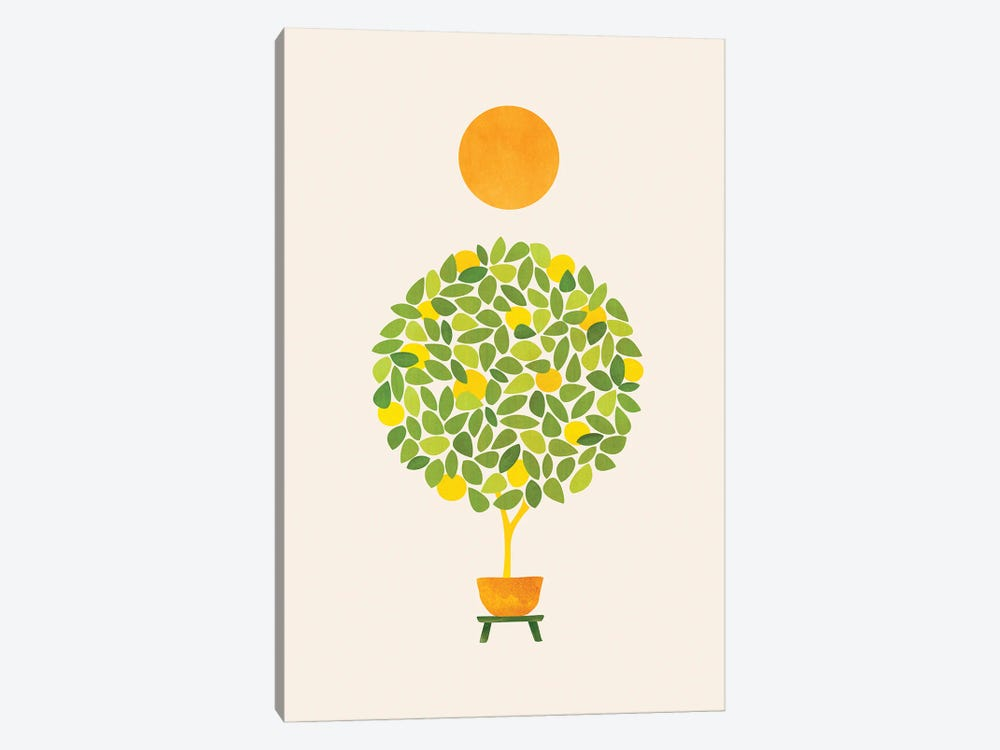 Sunshine And Lemon Tree by Modern Tropical 1-piece Canvas Artwork