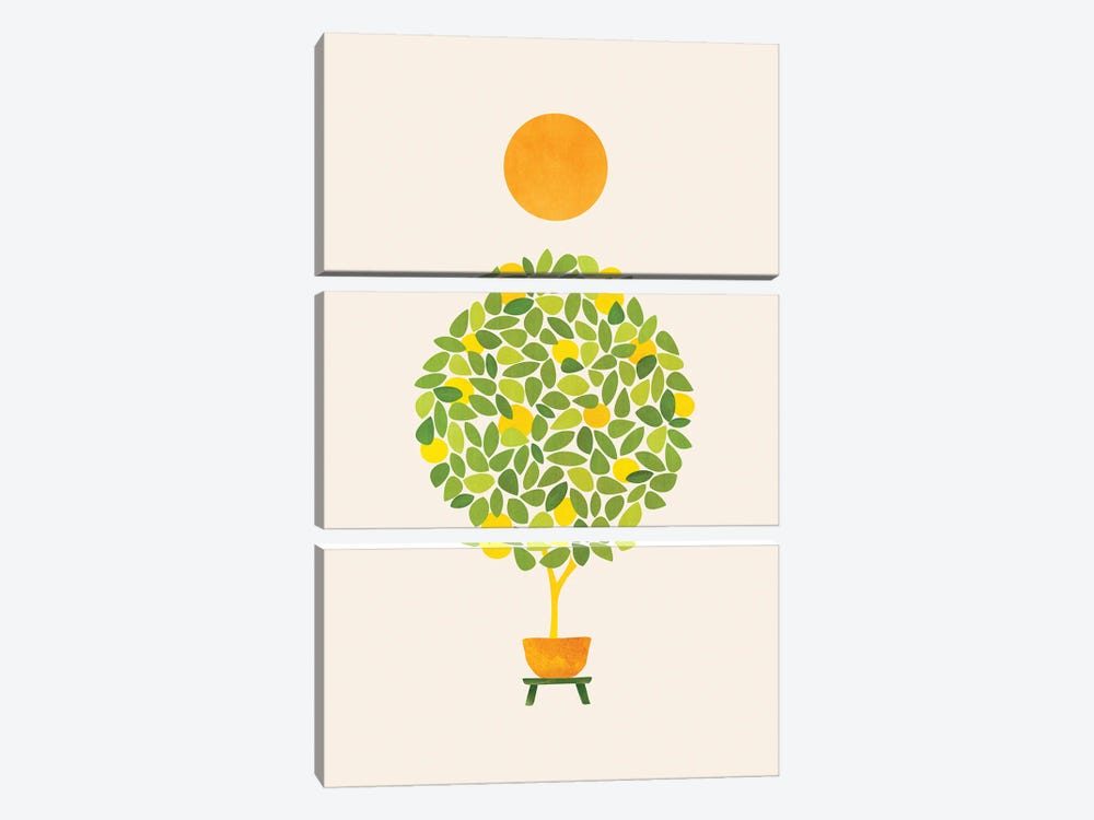 Sunshine And Lemon Tree by Modern Tropical 3-piece Canvas Wall Art