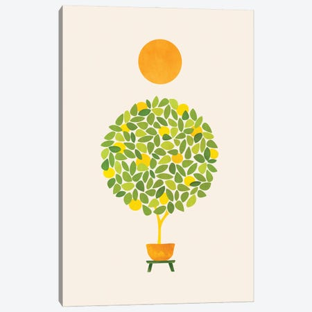 Sunshine And Lemon Tree Canvas Print #MTP161} by Modern Tropical Canvas Print