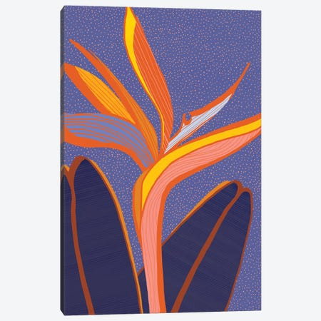 Bird Of Paradise Canvas Print #MTP16} by Modern Tropical Canvas Artwork