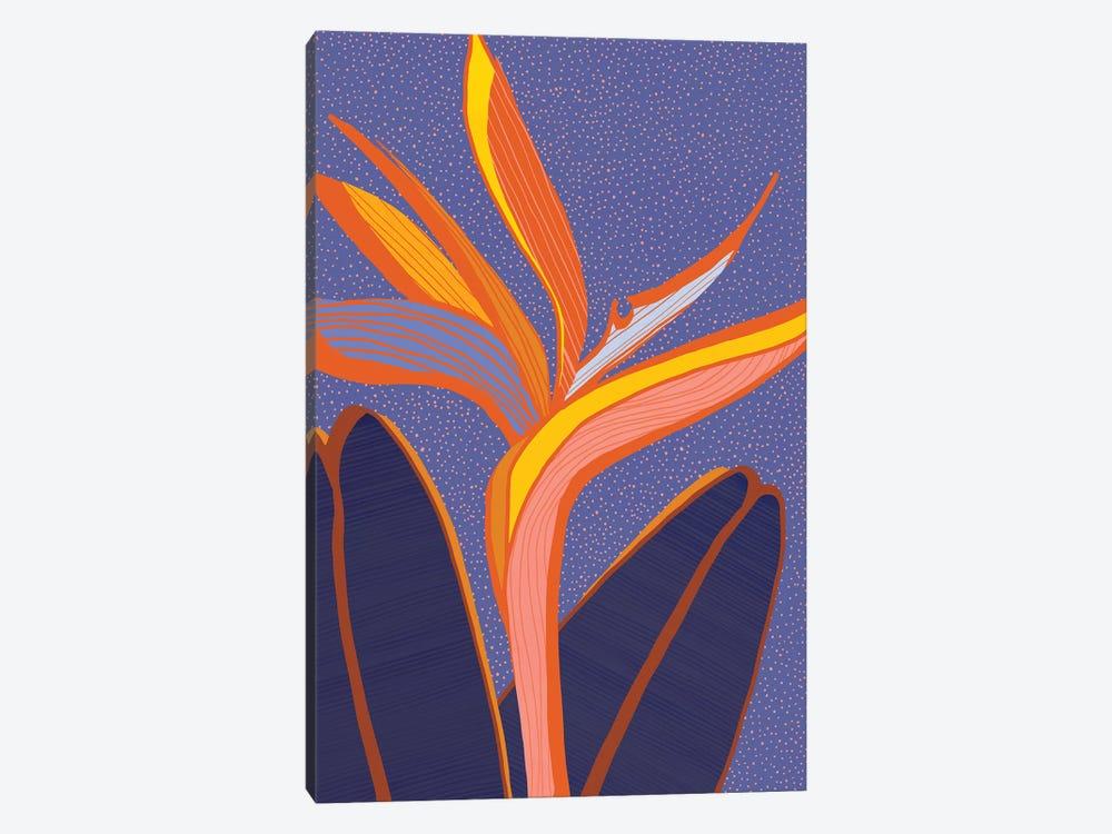 Bird Of Paradise by Modern Tropical 1-piece Canvas Print