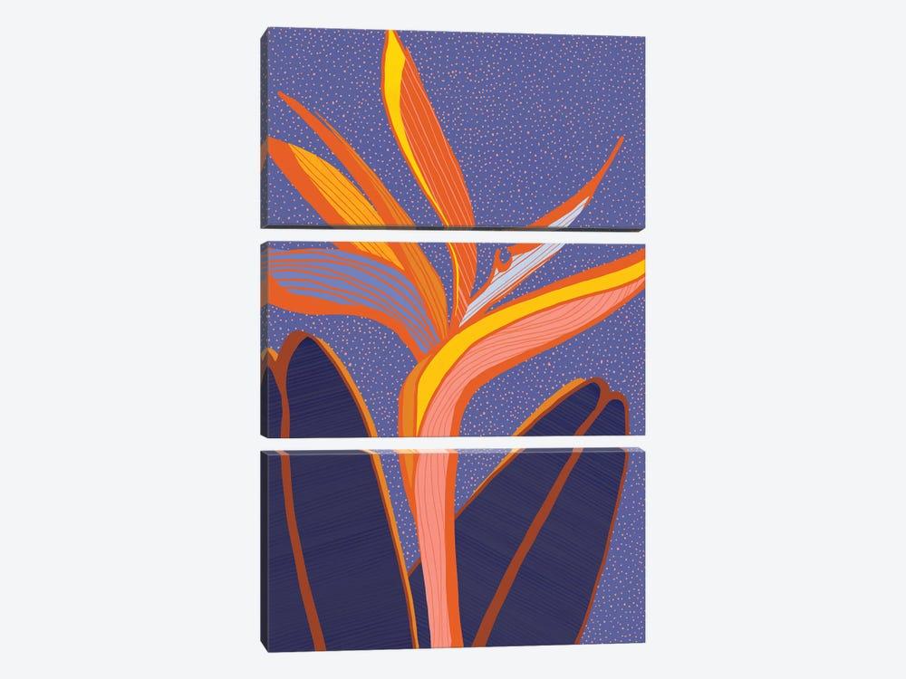 Bird Of Paradise by Modern Tropical 3-piece Canvas Art Print