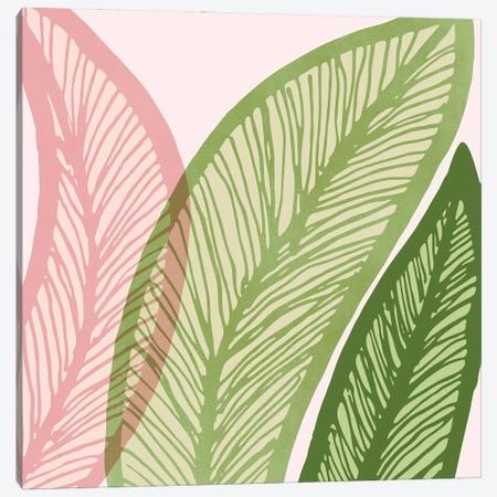 Modern Banana Leaf Canvas Print #MTP172} by Modern Tropical Canvas Artwork