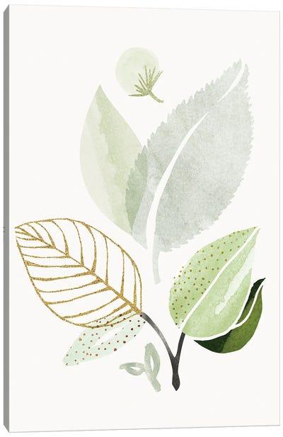 Spring Forest Bouquet II Canvas Art Print