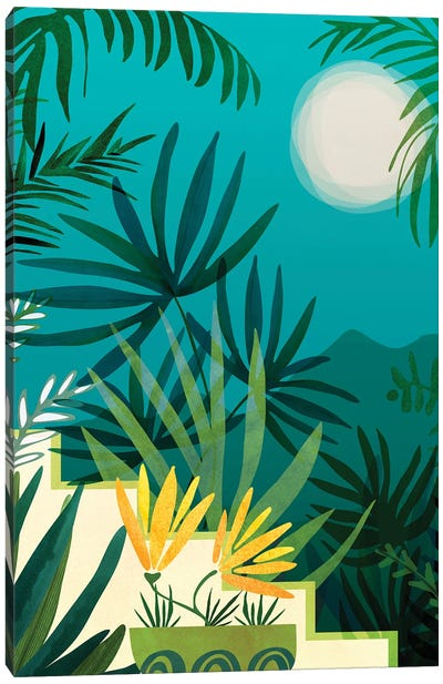 Rainforest With Moonlight Canvas Art Print