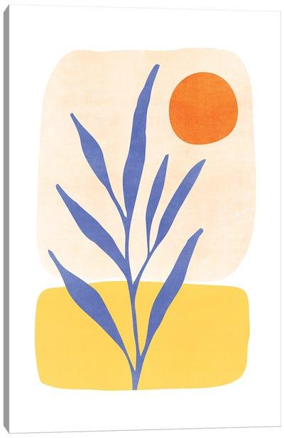 Nature'S Balance Canvas Art Print
