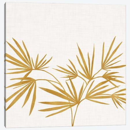 Golden Fan Palm Canvas Print #MTP200} by Modern Tropical Canvas Art