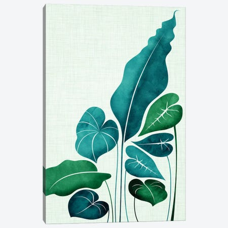 Cacophony Canvas Print #MTP20} by Modern Tropical Canvas Artwork