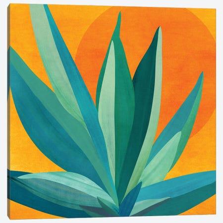 West Coast Sunset Canvas Print #MTP213} by Modern Tropical Canvas Art Print