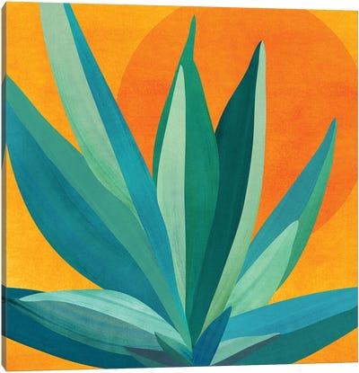 West Coast Sunset Canvas Art Print