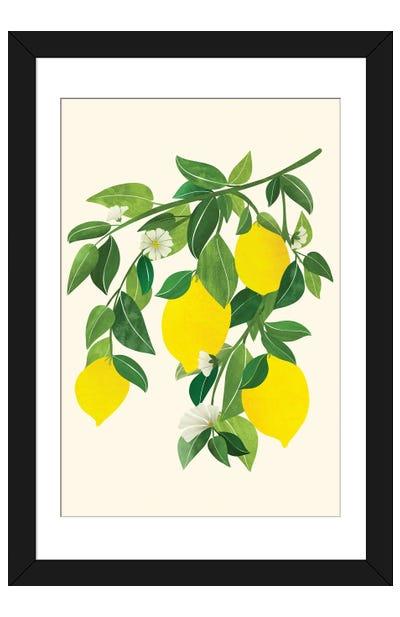 Sunny Lemons Framed Art Print